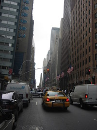 Flags_in_nyc
