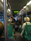 Fuzzy_on_the_bus