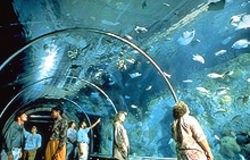 No_aquarium_entrance_1