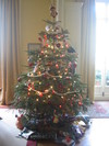 Our_christmas_tree_05