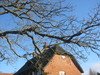 Thatched_roof_and_sky